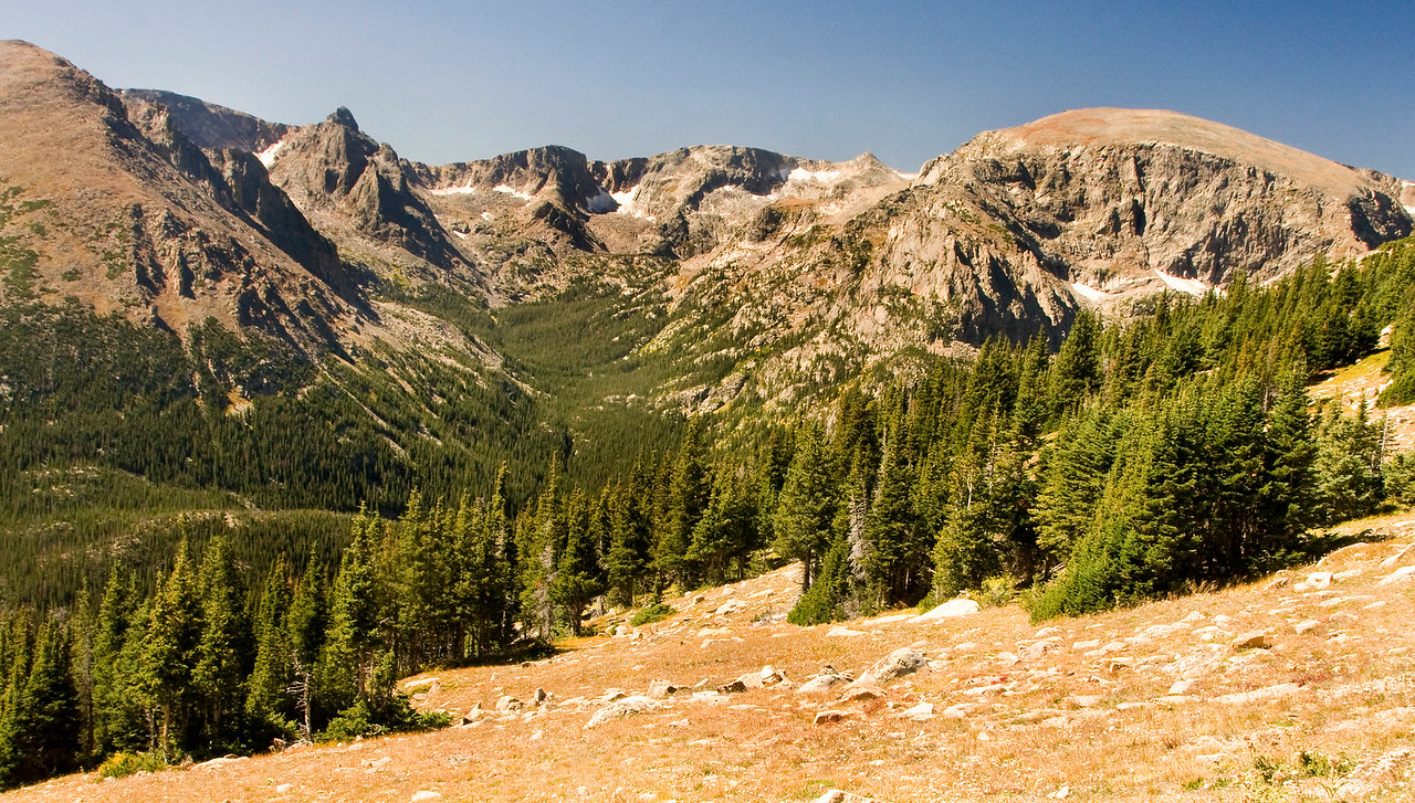 Almost at the tree line, 11,500 ft, on Trail Ridge Road in Rocky Mountains National Park.
