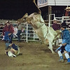Southern Rodeo Company - Shady Dale, GA June 2014