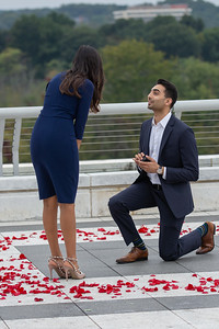Rohit and Monica