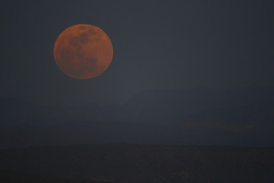 The sky was super hazy, making pic taking of the supermoon rather difficult!