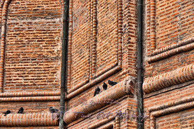 Church wall with pigeons, Antim Ivireanu Monastery, Romania.