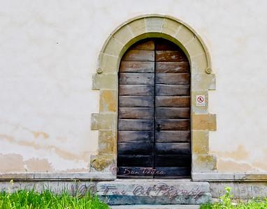 Door, Putna Monastery.