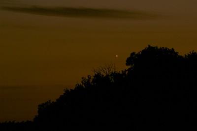 Venus in the horizon