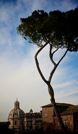2013 Rome 3
