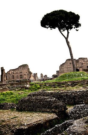 2013 Rome 23