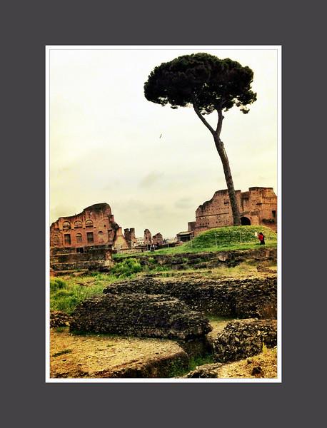 2013 Rome 21