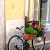 Bicycle in Rome Italy
