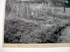 West Virginia Landscape by O. E. Romig O. E. Romig silver print