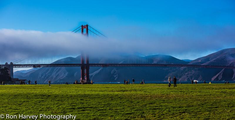 Crissy Fields in San Francisco fall 2013.