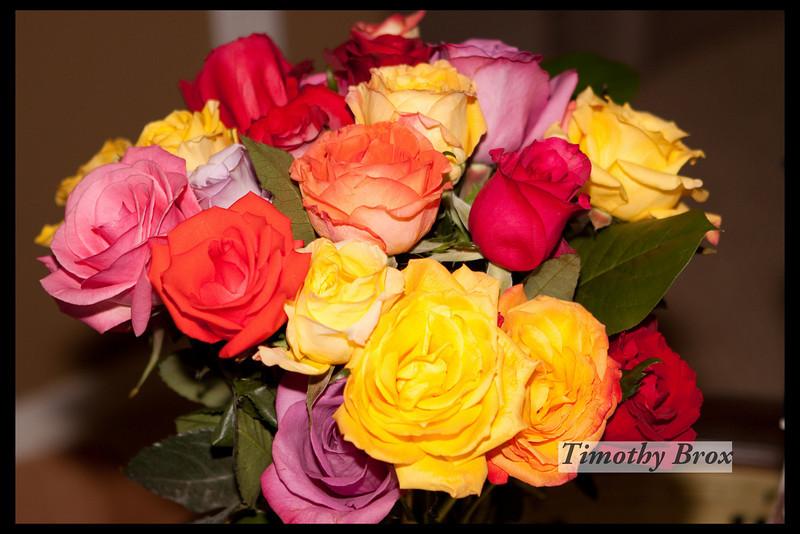 Rose Macros-0884