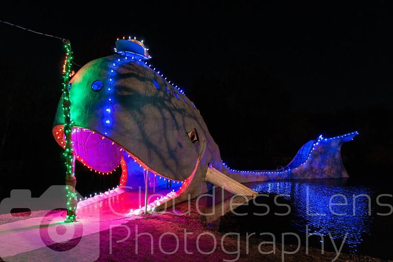 Blue Whale Christmas 2020