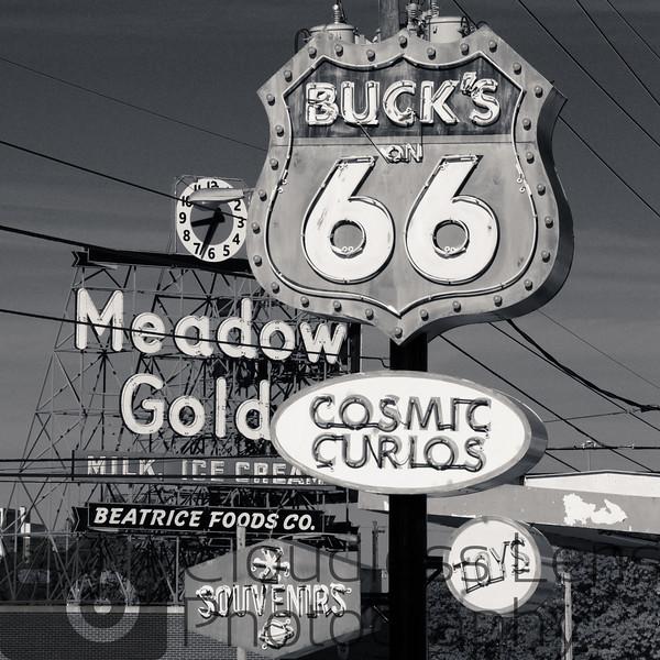Buck Atom Neon B/W