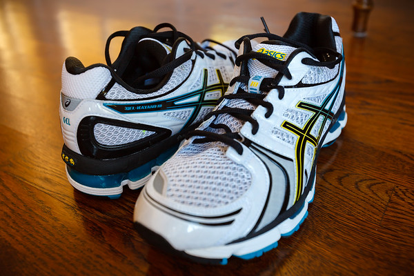 Will this be a worthy successor to the Kayano 15?