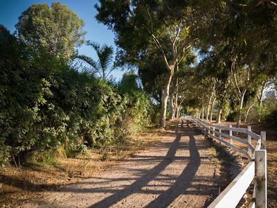 Howlett Trail (looking towards the start/finish)