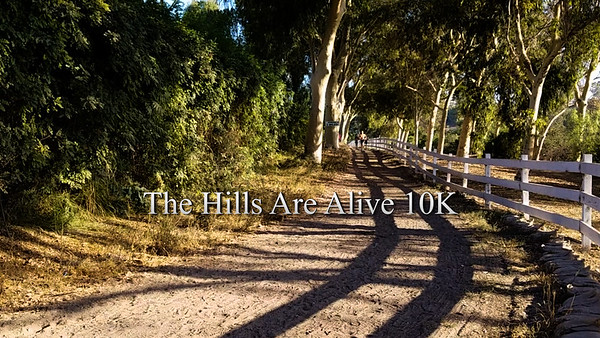 The Hills Are Alive 10K 2016
