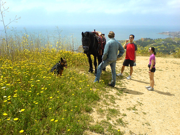 As we make our way back down, we come across someone walking with their dog and horse