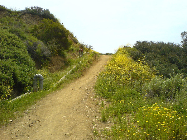 I am taking a break at the lowest point of the trail...