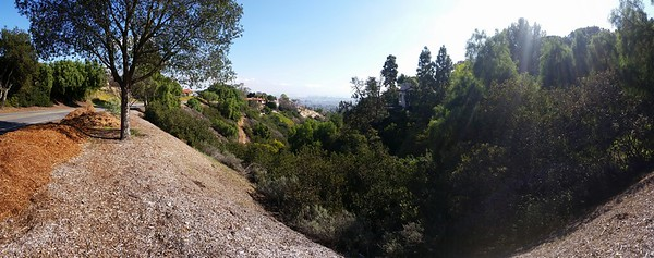 From today's 20 mile run #lamarathon...you know I'm going long when I'm running up Palos Verdes Drive East