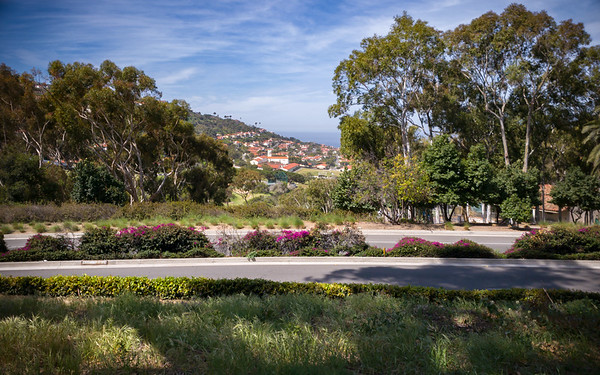 View of Malaga Cove Middle School from the trail overlooking Palos Verdes Blvd