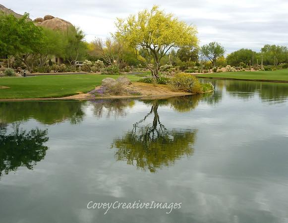 Boulder's duck pond.