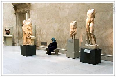 Hostile Environment.  Metropolitan Museum.  New York