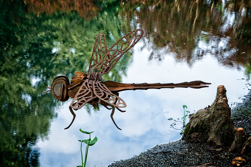 """""""Metal Dragonfly"""""""