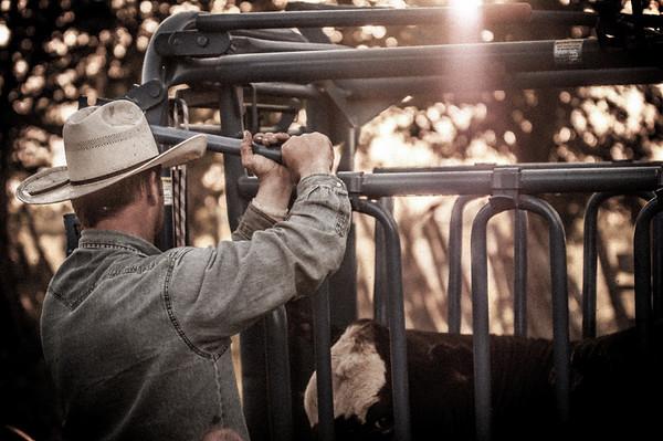 BP_2012-SO_Ranch-Cowboys-3394