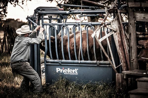 BP_2012-SO_Ranch-Cowboys-3402