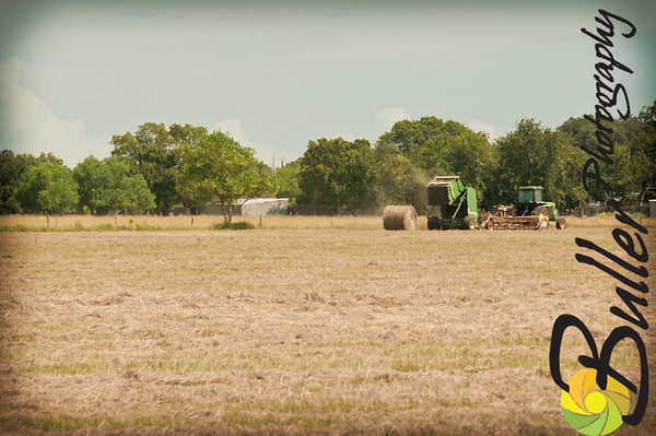 BullerPhotos_HayBaling-0719