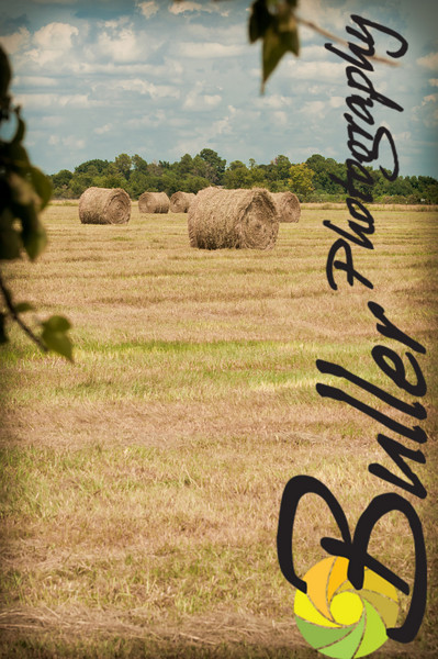 BullerPhotos_HayBaling-0718