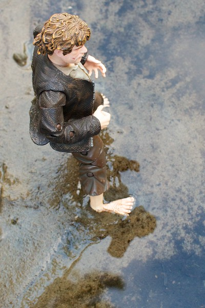 JULY 26 -Well Sam stands in the river wondering how he got here.  Wondering about Frodo, the ring, and the journey they've been on.  As always he wishes they could just go back to the days in the Shire, where they laughed all the time and had little to worry about.