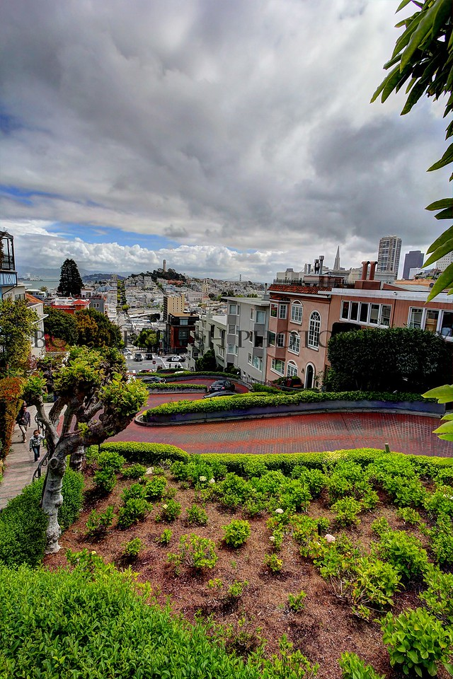 Crookedest street in the world...Lombard Street, San Francisco.
