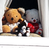 Teddy Bears in Window in Victorian House in San Francisco