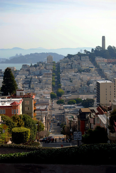 View From Atop Lombard Street