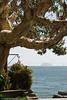 Alcatraz Island seen from Sausalito - California, USA