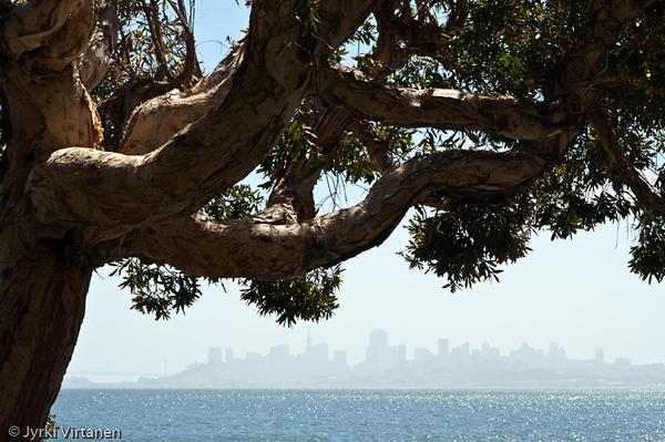 San Francisco from Sausalito - California, USA