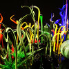 Chihuly Glass Exhibit In San Francisco 2