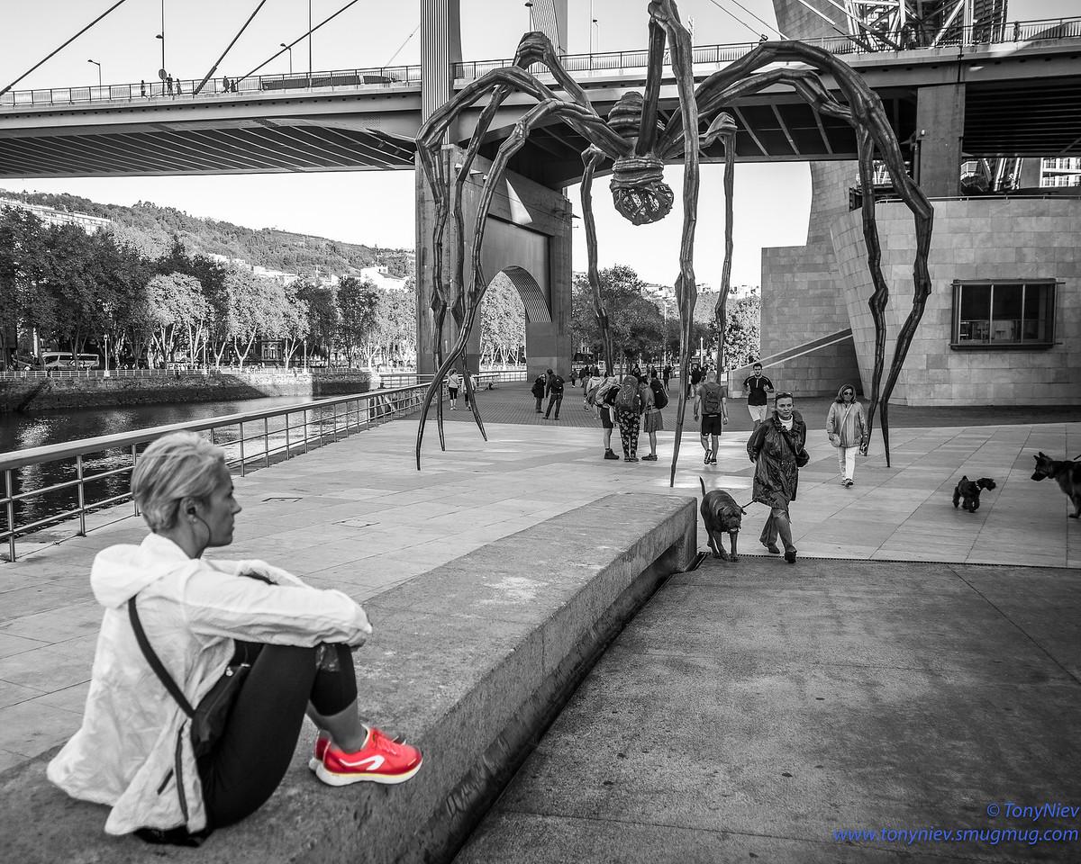 IMAGE: https://photos.smugmug.com/Photography/San-Sebastian-and-Santiago-Compostela/i-bbQtnh3/0/c8402c5c/X2/L1005705-Edit-X2.jpg