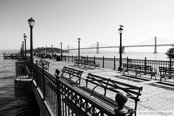 """Pier 7 Monochrome"" ~ Sea gulls rest on lampposts at Pier 7 as local San Franciscans partake in fishing and crabbing in the distance.  The Bay Bridge and Yerba Buena Island provide a beautiful backdrop to the bench-lined pier."
