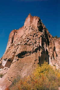 bush,cliff,sky