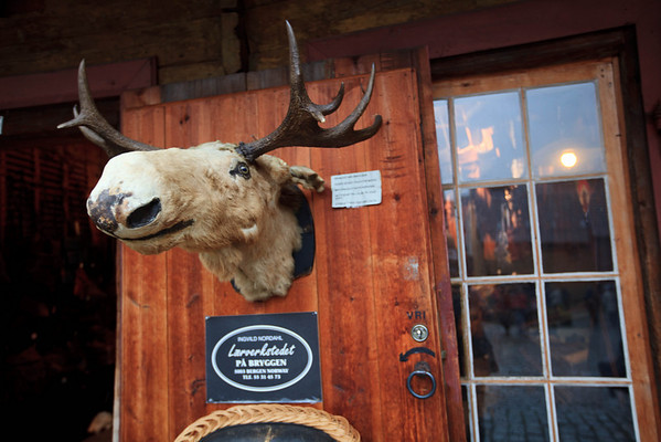 Need something in moose? This shop had every imaginable item that could be made from moose.