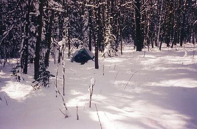 Camping - Beaver Mines