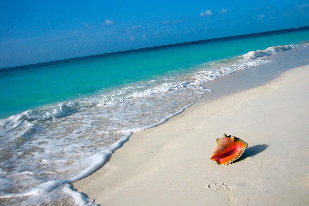 Turks & Caicos shore