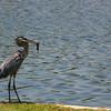 Balboa_Lake_072908_72