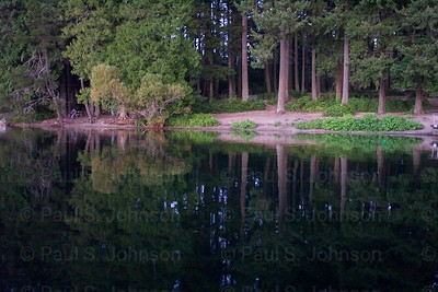 Lake_Samamish_Reflection