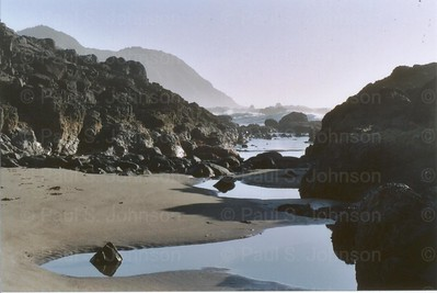 Oregon_Coast_at_Low_Tide