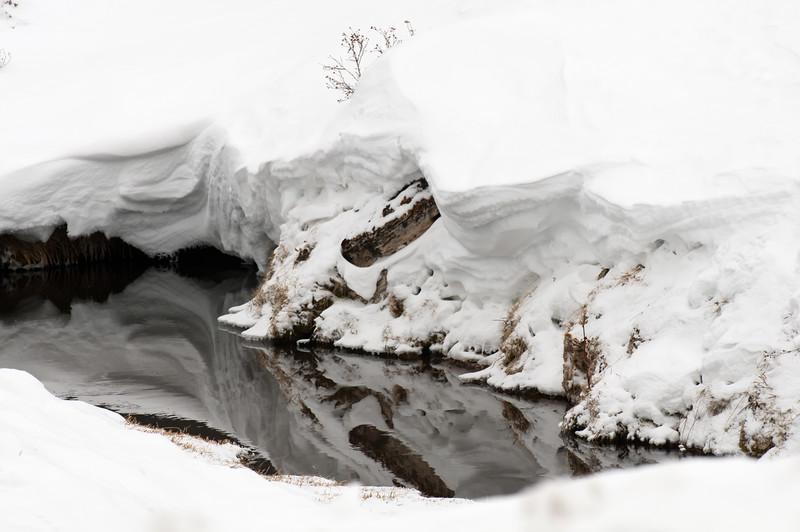 Snow Reflections 1