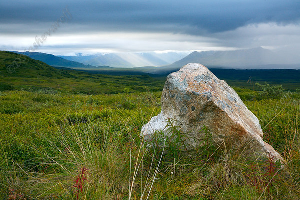 The Rock at Denali National Park