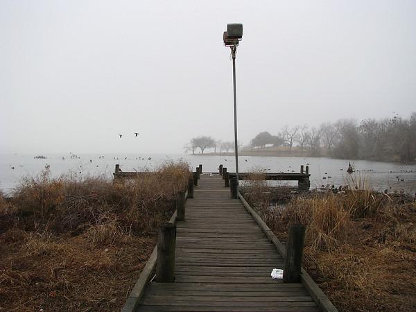 20080126_01644