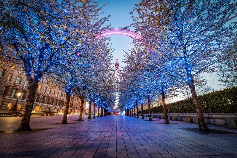 Way to London Eye